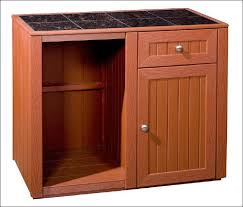 Cabinet With Mini Fridge Imanisr Com Mini Fridge Bar Cabinet
