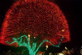crazy christmas tree lights camera fun making crazy art using christmas lights mental floss