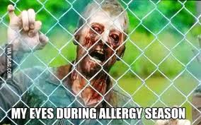 me eyes during allergy season viral viral videos