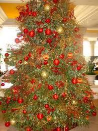 le bristol paris christmas trees pinterest bristol