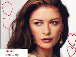 cathrine zeta catherine zeta jones heart face shapes 101