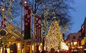 christmas tree lighting boston 2017 the 10 most amazing christmas trees in the u s