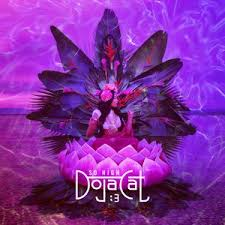 cat photo album albums by doja cat free listening concerts stats and