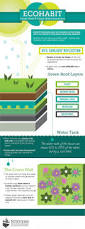 ecohabit green roof u0026 wall visual ly