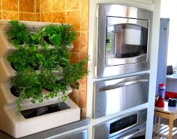 indoor kitchen garden ideas lawn garden fabulous stainless steel kitchen appliances minimalist