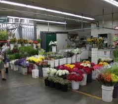 Wholesale Flowers Paradise Garden Wholesale Flowers The Los Angeles Flower Market