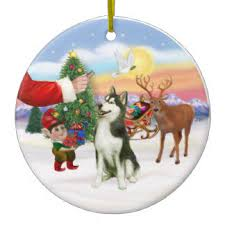 siberian husky gifts t shirts posters other gift ideas