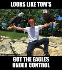 Superb Owl Meme - nfl memes best insults to tom brady patriots after loss to broncos