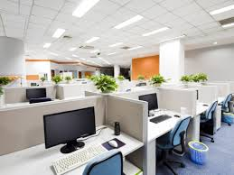 Steam Cleaning U0026 Floor Care Services Fort Collins Co Commercial Carpet Cleaning Fort Collins Windsor Greely