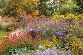 Border Ideas For Gardens Planting Combination Ideas
