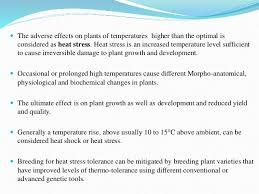 High Heat Plants Heat Tolerance In Wheat