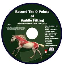 beyond the 9 points of saddle fitting dvd schleese