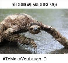 Make A Sloth Meme - 25 best memes about baby sloth baby sloth memes