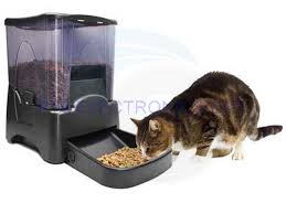 Wall Mount Pet Feeder Newest Type Plastic Bulk Dry Food Dispenser Countertop Double And