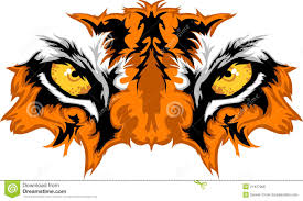 tiger eyes vector graphic royalty free stock photos image 21427968