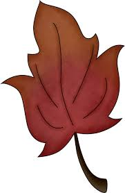 maple leaf template free printable clip art library