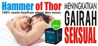 hammer of thor distributor resmi indonesia
