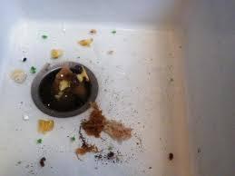 sink backing up with garbage disposal garbage disposal sink backing up