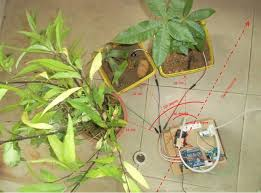 arduino automatic watering system for plants sprinkler 7 steps