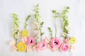 digital blooms september 2017 free desktop wallpapers