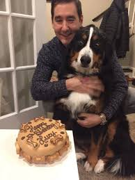 Birthday Cake Dog Meme - i thought ordering my dog a birthday cake would be a waste of money