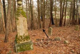 maine ghost hunters blogs cemetery musings cedar trees
