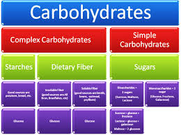 types of carbs michael cocchiola
