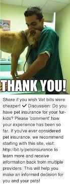 Pet Insurance Meme - 25 best memes about do you have pet insurance do you have