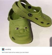 Shrek Meme - 24 funniest things tumblr had to say about shrek smosh