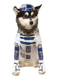 pet costumes rubies costume wars r2 d2 pet costume chihuahua kingdom