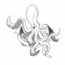 octopus vectors photos and psd files free download