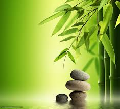 imagenes zen gratis scaricare gli sfondi terme zen pietre bambù sfondi gratis per la