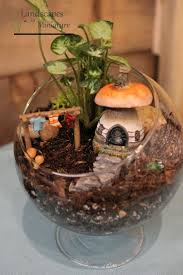 indoor fairy garden ideas gardening ideas