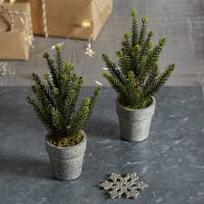 mini potted spruce christmas tree set of 2 christmas trees