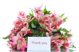 alstroemeria flower alstroemeria flower meaning flower meaning