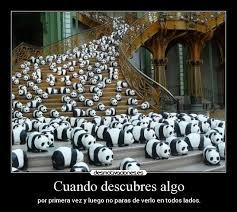 imágenes y carteles de pandas desmotivaciones