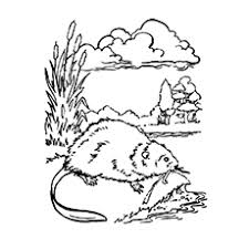 coloring page for toddlers 10 best beaver coloring pages for toddlers