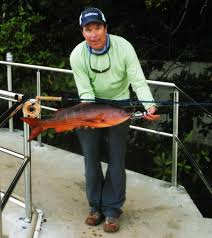 world record fish 221 catches submitted to the igfa field u0026 stream