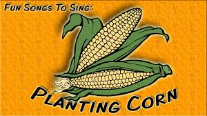 planting corn thanksgiving song for children