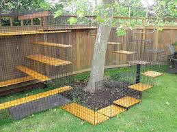backyard ideas for dogs dog run ideas ideas for dogs backyards terrific garden dog fence