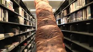 elon university belk library t rex 2016 youtube