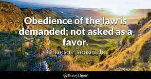 Why Law Is Blind Law Quotes Brainyquote