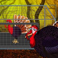 play games2rule thanksgiving fruits forest esca at