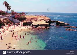 California snorkeling images La jolla cove is a popular swimming scuba diving and snorkeling jpg