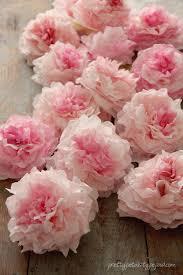 Peony Flowers by Peony Coffee Filter Flowers Tutorial Pretty Petals