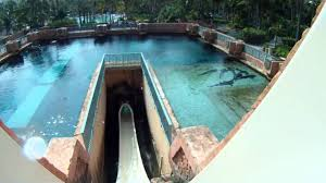pov leap of faith waterslide at atlantis bahamas extremely