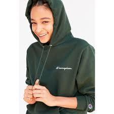 best 25 fleece lined hoodie ideas on pinterest beige champion