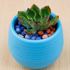 online buy wholesale coloured plastic plant pots from china