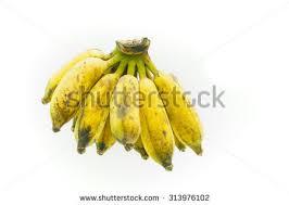 banana comb banana vector collection stock vector 367465304