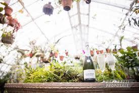 Botanical Gardens Dallas by Dallas Marriage Proposal Ideas